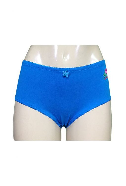Kristie Full Cotton Brief